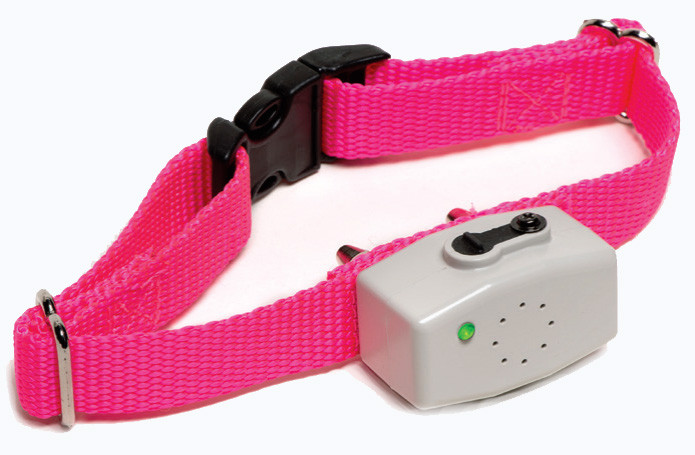 Dog Guard Mini Receiver
